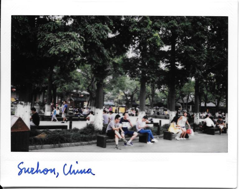 Suzhou Trees