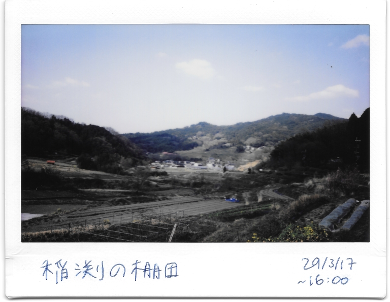 Inabuchi Rice Terrace 2